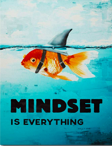 mindset is everything.png